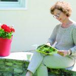 Eine Natursteinmauer stellt eine schöne Sitzgelegenheit im eigenen Garten dar.