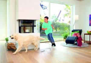 Ein Hund und ein Junge laufen auf dem Holzfußboden und verteilen Schmutz. (Holzfußböden)